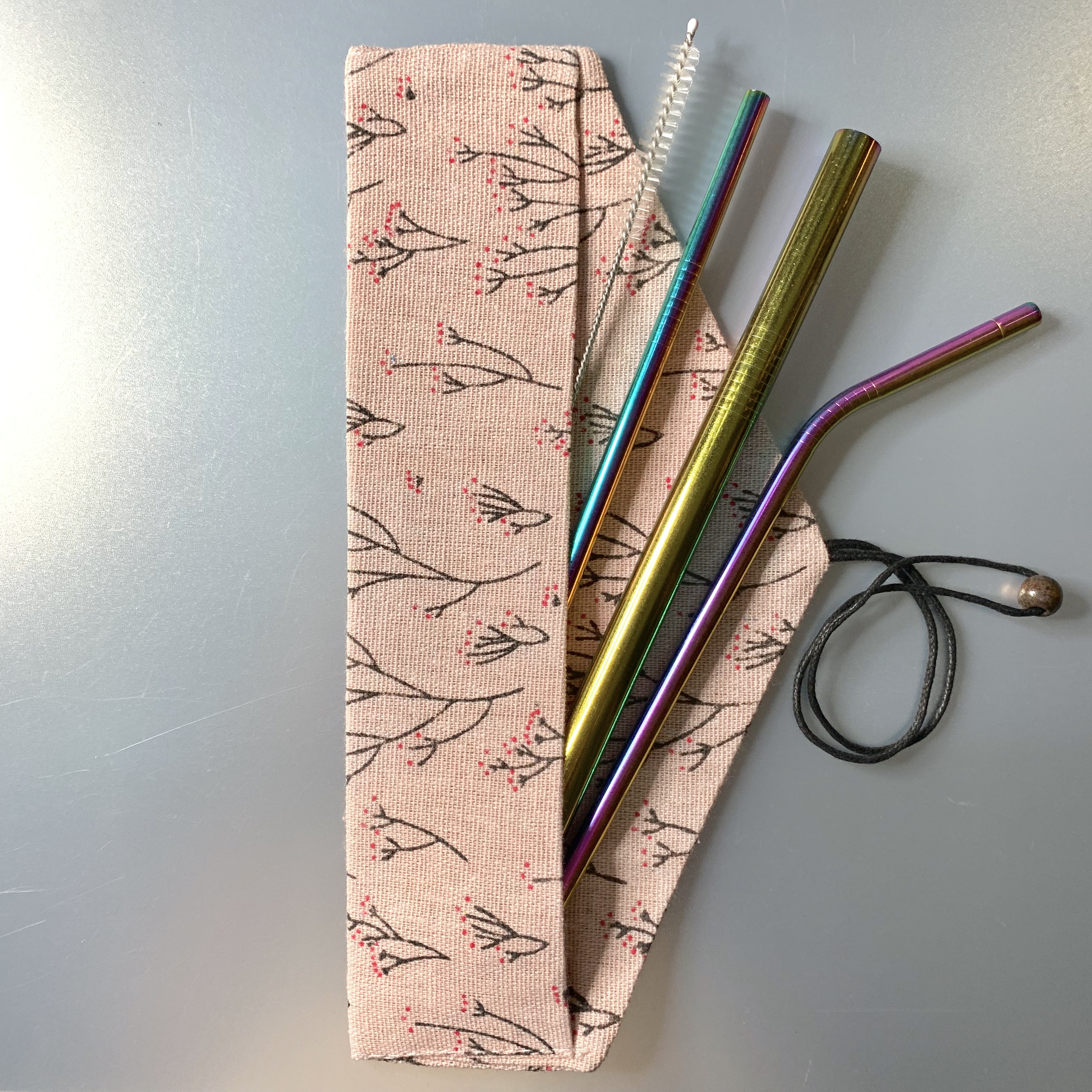Stainless Steel Straw Set (Coloured Straw)