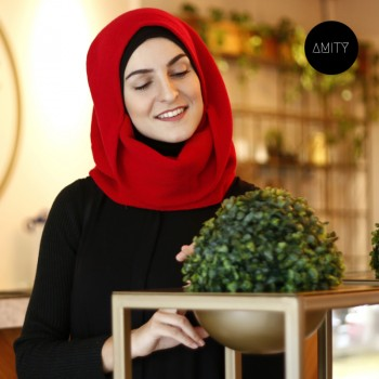 Amity Scarf Red