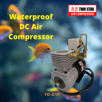 Two Star FD-D1P-DC12V 12V DC Oil Free Waterproof On Board Air Com