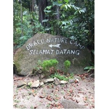 Draco Nature Camp - Thecamparound