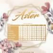 THE ASTER - BLUSH PINK - KHAIZAN
