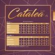 CATALEA SUIT V6 - COFFEE BROWN - KHAIZAN