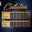 CATALEA SUIT V8 - BURGUNDY - KHAIZAN