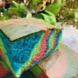 Colourful Cake  - Aleysha Bakers