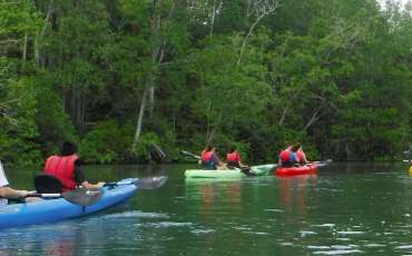 Kayaking in Singapore: 5 locations to kayak that you may not know about