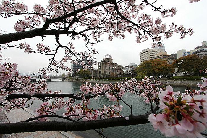 cherry-blossoms-japan-2019-peace-memorial-park