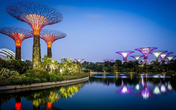 date-ideas-singapore-gardens-by-the-bay