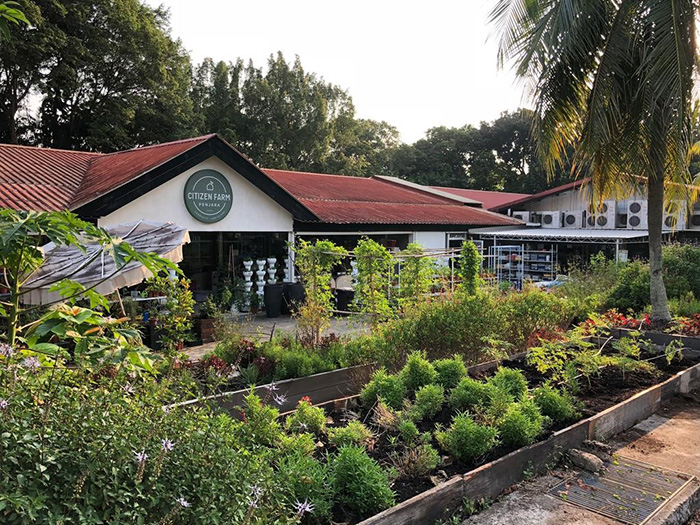 15 farms to visit in Singapore that'll be fun for both kids and