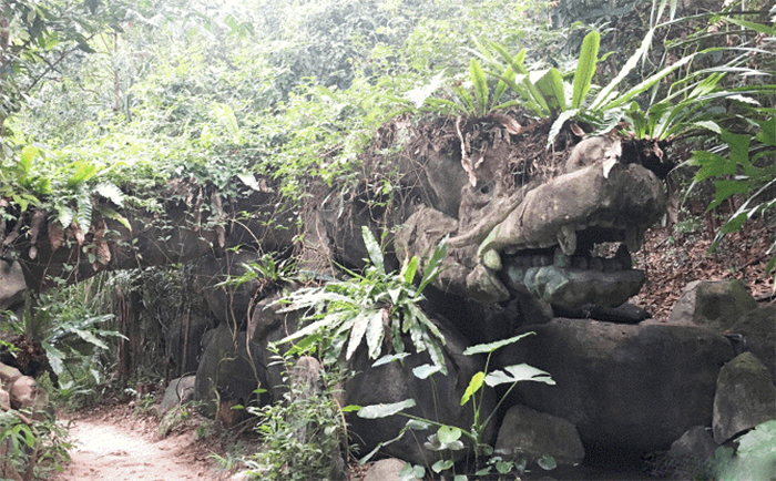 hiking-trails-in-singapore-mount-imbiah-trail