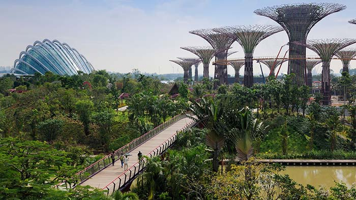 scenic-places-to-jog-gardens-by-the-bay