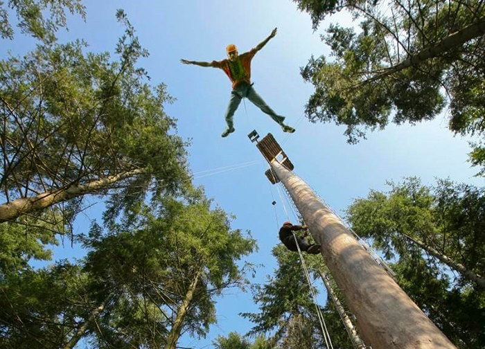 best-bungee-jumping-places-in-the-world-Redwood-Forests-Trees