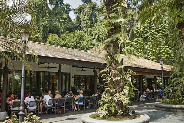 pet-friendly-establishments-in-singapore-casa-verde-4