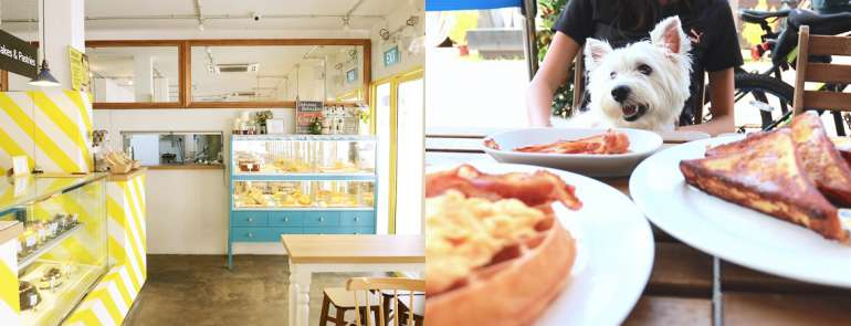 26 pet-friendly food joints and other establishments in Singapore that you need to visit with your furball, STAT!