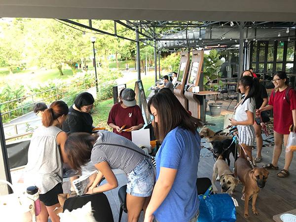 pet-friendly-establishments-in-singapore-five-2-2