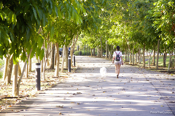 pet-friendly-establishments-in-singapore-gardens-by-the-bay