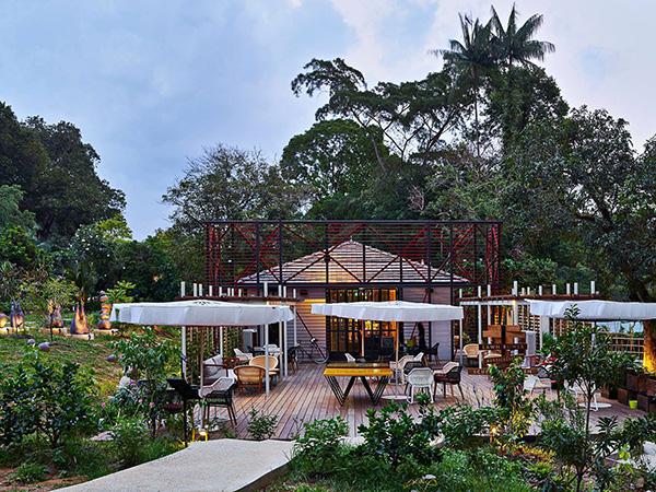 pet-friendly-establishments-in-singapore-open-farm-community