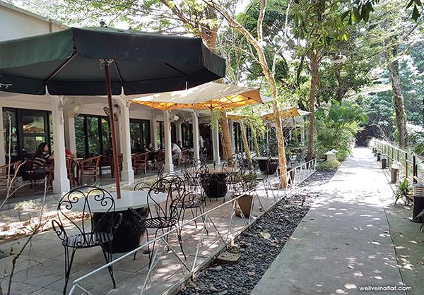 pet-friendly-establishments-in-singapore-the-coastal-settlement-2