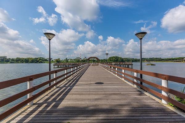 interesting-picnic-spots-singapore-lower-seletar-reservoir