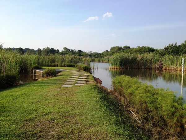 11 picnic spots in Singapore you'd never have thought of ...