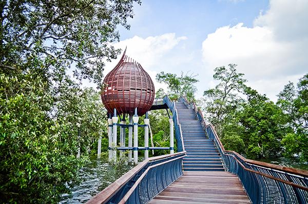 interesting-picnic-spots-singapore-sungei-buloh-wetland-reserve