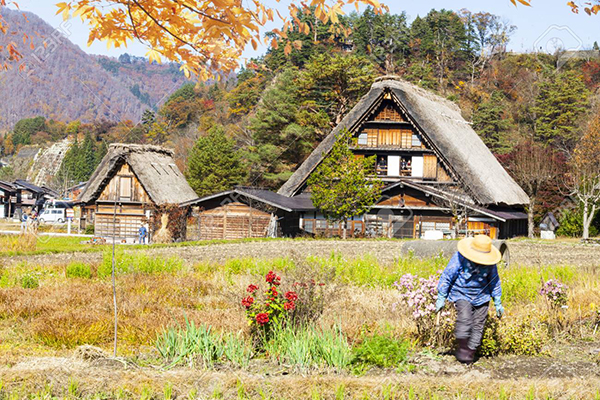 underrated-cities-to-visit-historic-villages-in-japan
