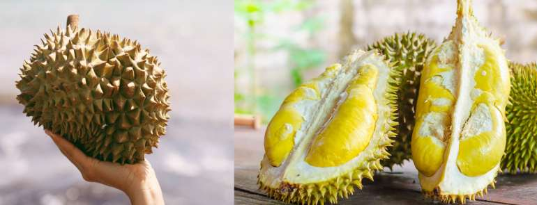 Complete guide to buying durians in Singapore: varieties, prices, stores, seasons