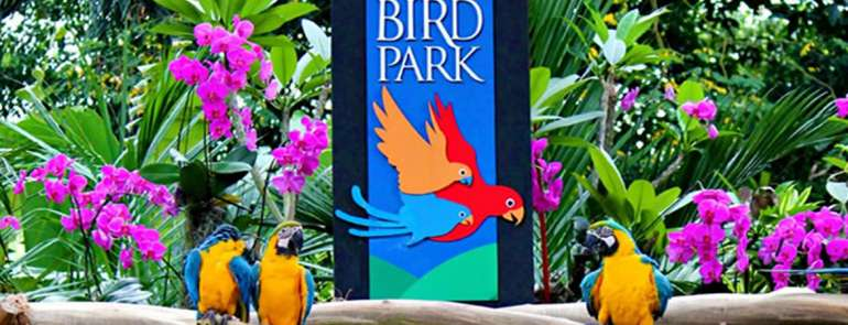 Bring the whole family to Jurong Bird Park from 6 to 15 Sep – admission is FREE!