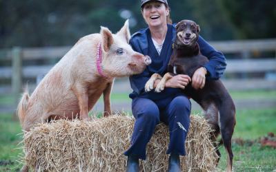 This Sanctuary Gives a Much-Needed Voice to Farm Animals