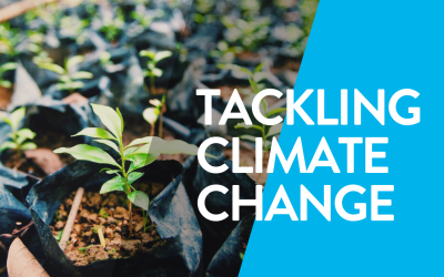 Tackling Climate Change: From protecting wildlife to educating the next generation