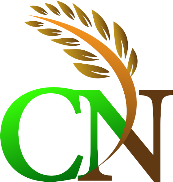 Logo của Cần Thơ Net