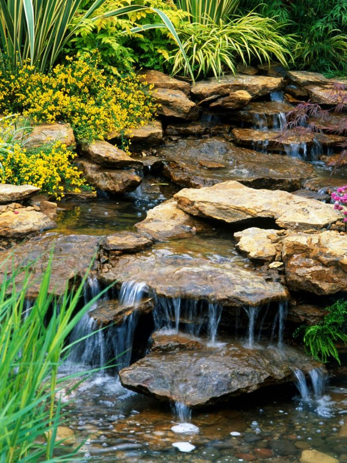 Water Feature for backyard
