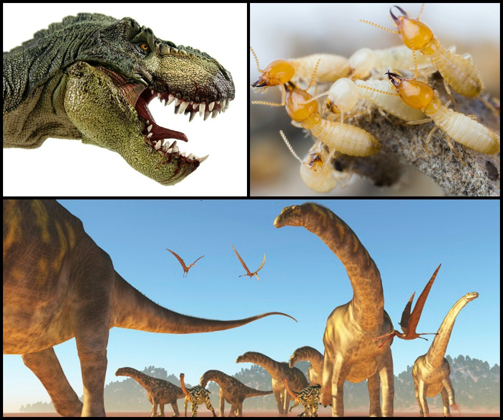 termite-age-of-dinosaurs-collage