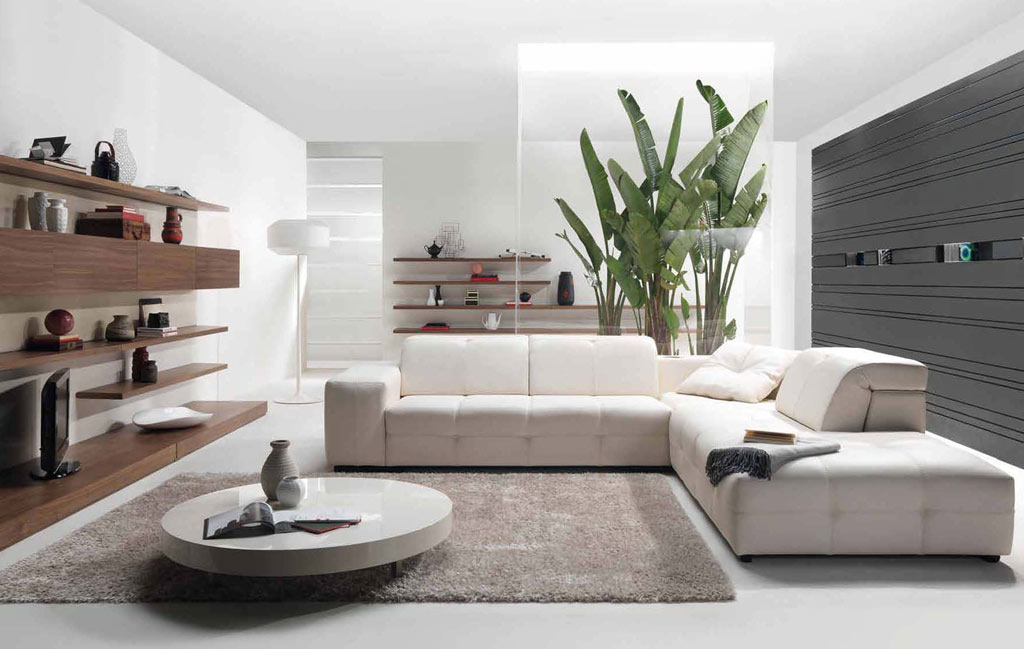 Charmant Minimalist Living Room