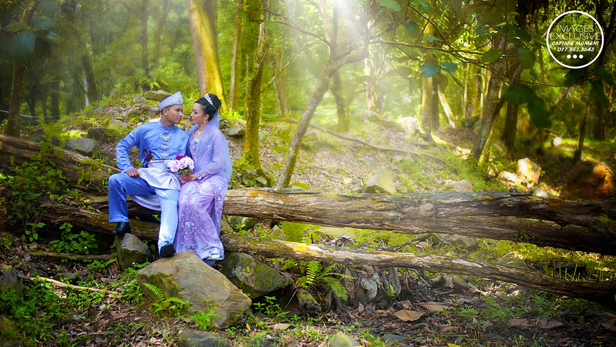 malay prewedding photography forest