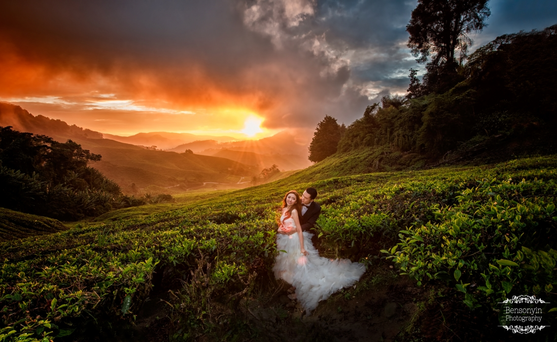 cameron highlands tea plantation photoshoot