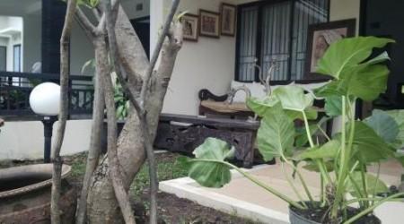 Villa nyaman dan asri Casa Harmony