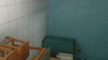 Private shower/Longterm/Decent B&B