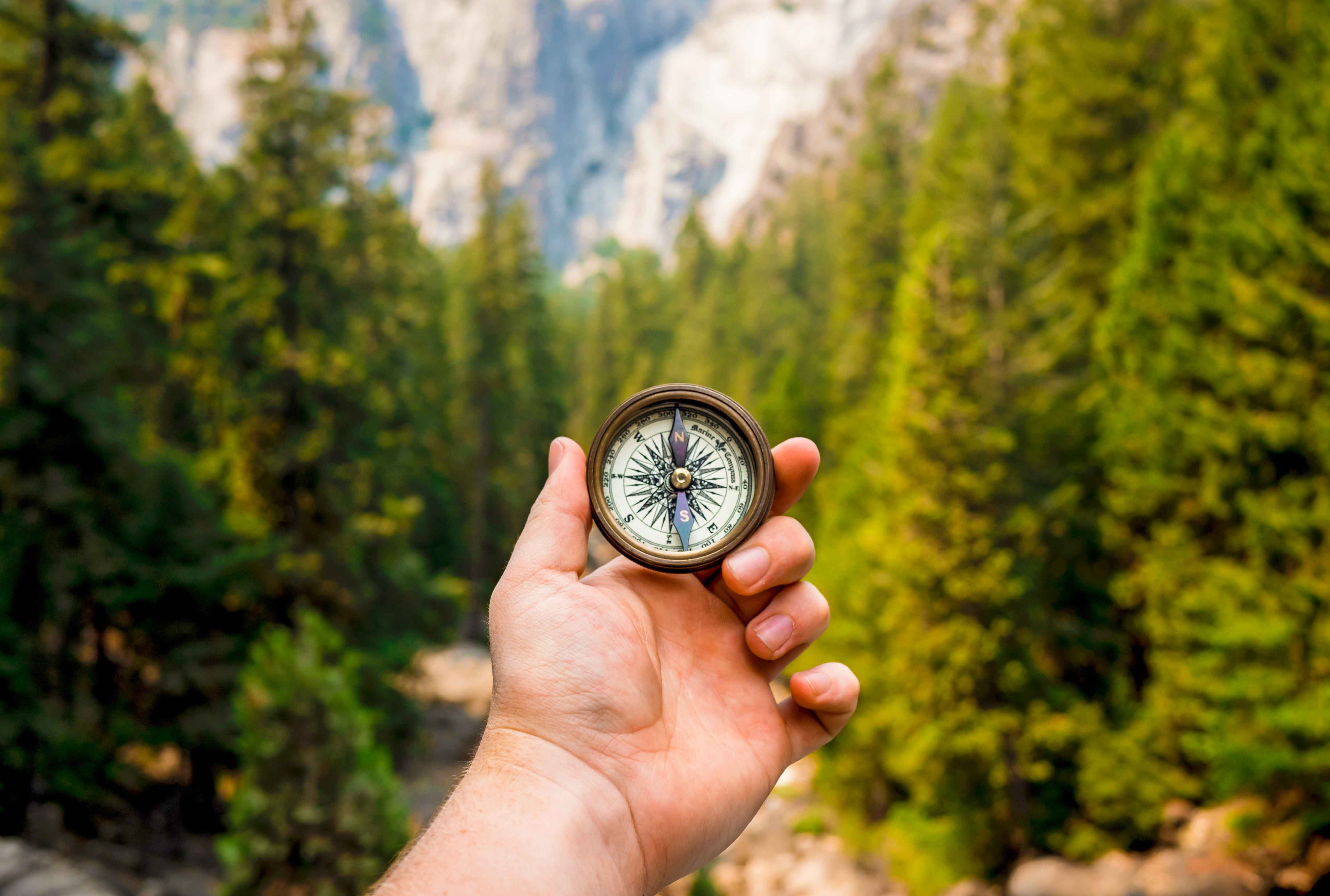 hand holding up a compass in front of a forest