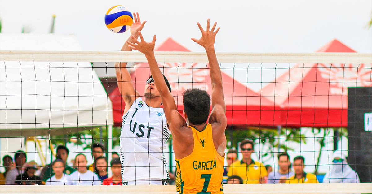 men playing volleyball, international athletic scholarships article image