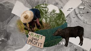 The True Rich: Musings on Eco-Capitalism