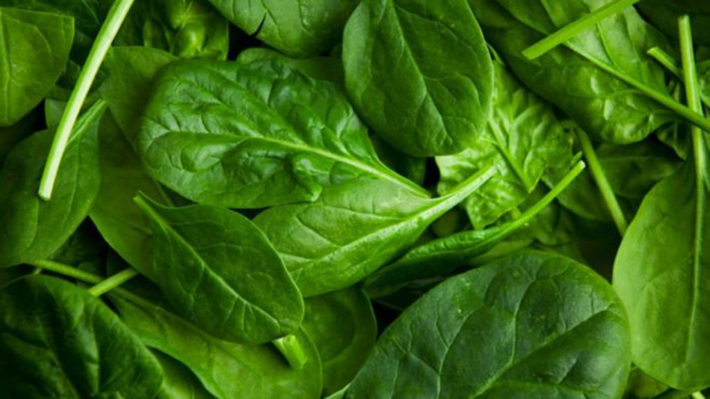 spinach-ilikevegetables