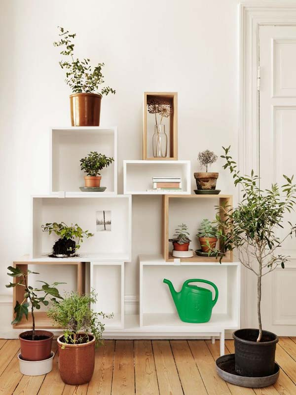 10 Indoor Garden Ideas That Will Inspire You to Have Your Own1