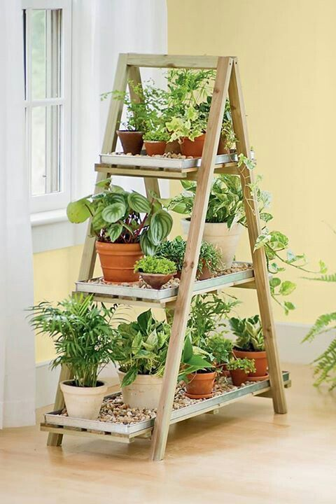 10 Indoor Garden Ideas That Will Inspire You to Have Your Own2
