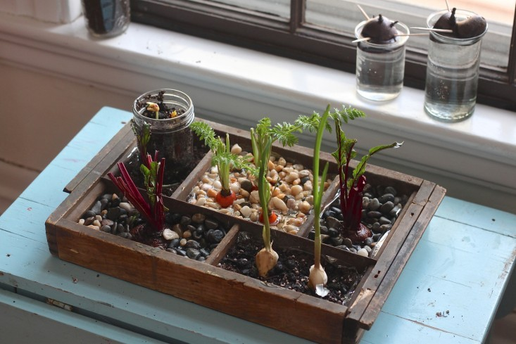 10 Indoor Garden Ideas That Will Inspire You to Have Your Own4
