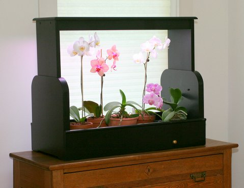 Easy ways to have a natural indoor garden in your apartment for Indoor gardening lighting guide
