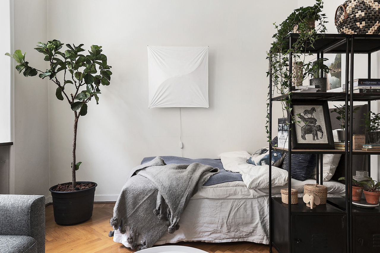 5 trendy ways to decorate with white walls white walls plants imoutsidelookingin amipublicfo Images