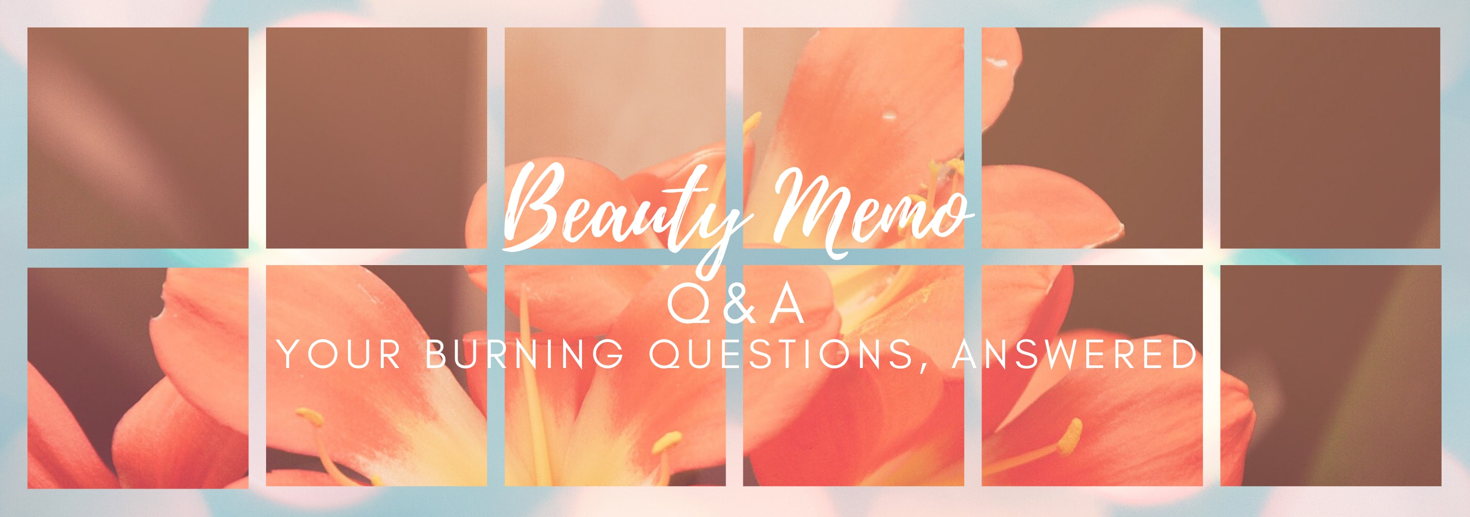 Q&A | Beauty Memo Gurus: Introductions
