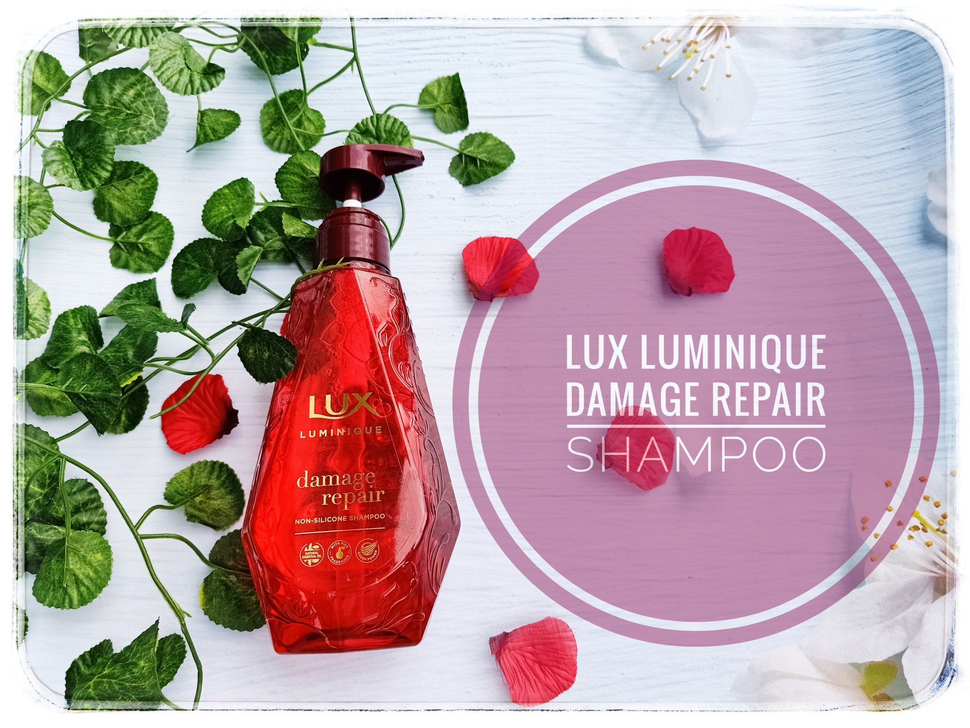 REVIEW | Lux Luminique Damage Repair Non-Silicone Shampoo – Must Try!