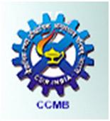 ccmb hyderabad dissertation