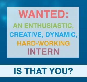 Content media internship